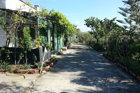 Gargano Nationalpark - Lesina - Apartment