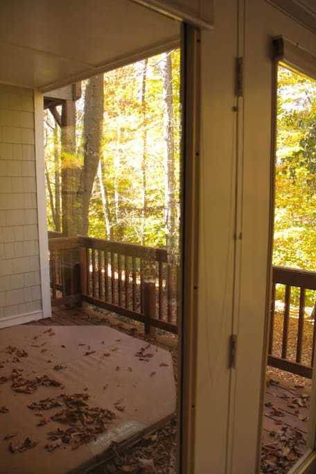 Porch looking at the woods