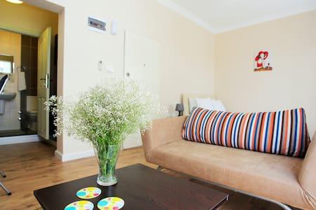 Izmir Studio Apt.Alsancak: Apart106 - Izmir - Apartment