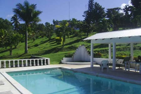 Studio cabin with pool   - Port Antonio - Cabaña