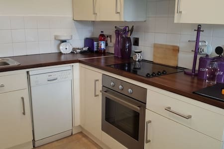 Specious Studio Flat With Parking - Londyn