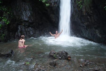 Bolita Rainforest Cabinas 1 - Andet