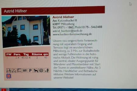 Ferienwohnung Häfner  in Miltenberg - Miltenberg - Daire