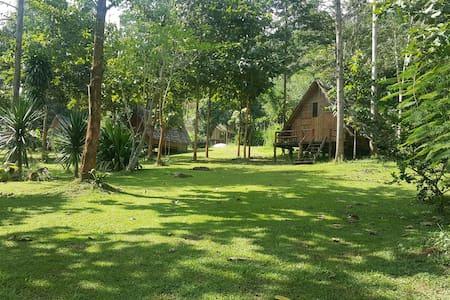 Bamboo Country Lodge - Amphur Maetang - Byt