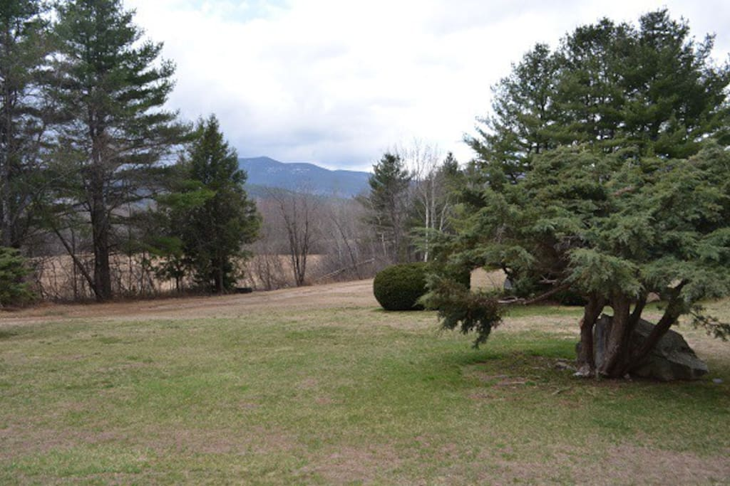 Outside views, 50 acres conservation land