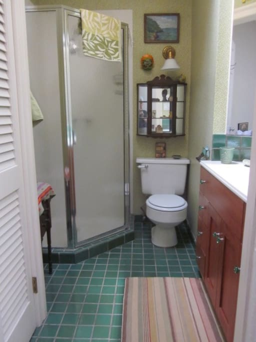 Private bathroom with shower, linen closet & storage in the vanity.