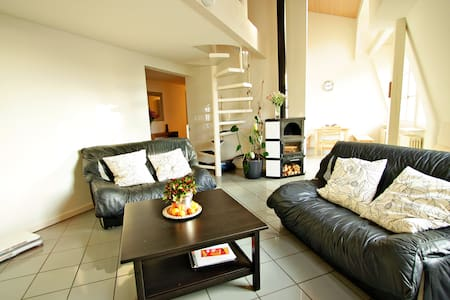 Comfort Apartment in the Embassy area - Bern
