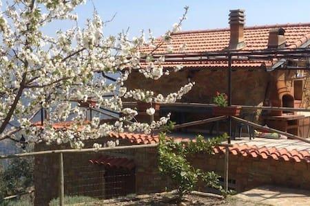 Casa a due piani immersa in vigneto - Dolceacqua  - Haus