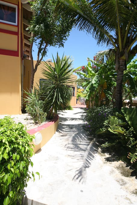 Apartments For Rent In Providenciales