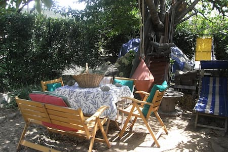 House's country in Maremma Tuscany - Bed & Breakfast