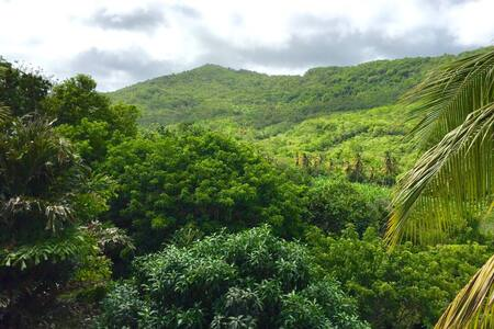 A Paradise View countryside room - Mon Repos