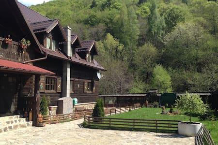 Romanian traditional house of rustic elegance - Sălişte - Chatka w górach