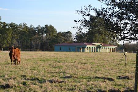 American Indian Working Ranch - Lumberton