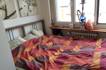 Private room central - Winterthur