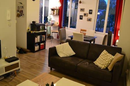 Canapé convertible bel appartement Arras centre - Wohnung
