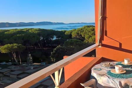 Sea panorama studio - Follonica - Apartment