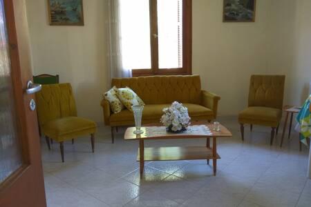 Μονοκατοικία μέσα σε οικόπεδο με  1,5 στρέμμα αυλή - Trikala
