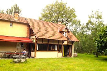 Maison au milieu des bois - Dom