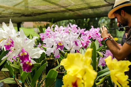 Finca Romelia Orchids & Birds - Szoba reggelivel