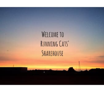 Running Cats' Sharehouse 跑跑貓的家(背包客)近東海,榮總,中科,台中機場 - Okręg Xitun