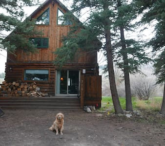 crested butte riverfront - House