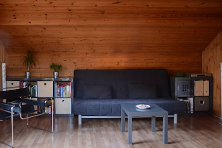Sofa in a quiet living room - Chur - Apartemen