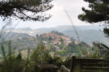 Panoramic Villa in Seborga, countryside Bordighera - Villa