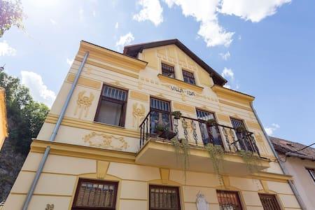 Villa Ida Vranov - Vila