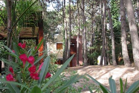 Magnifica residencia en el bosque - Rumah