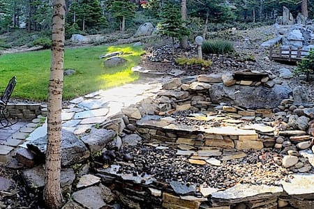 Room With A Forest View + 100 MG. WIFI+Netfix! - Stateline - Bed & Breakfast