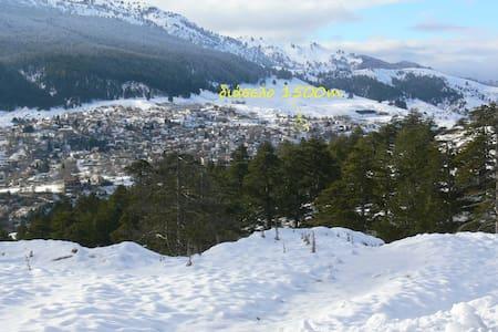 Διάσελο 1500m - Villa