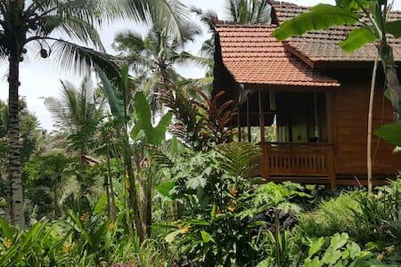 Wooden house in Ubud #3 - Payangan
