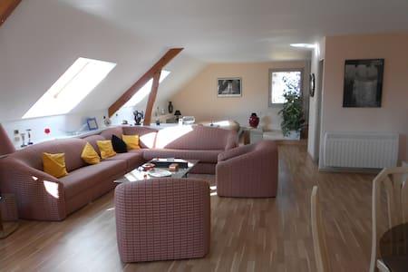 Le Closet - Saint-Parres-lès-Vaudes - Loft