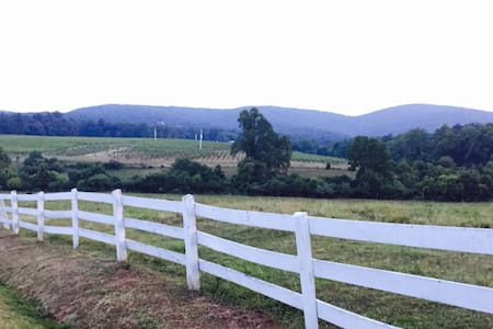 Vineyard Country Guesthouse - Barboursville - Hus