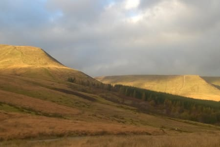Brecon Beacons walkers paradise - Apartment