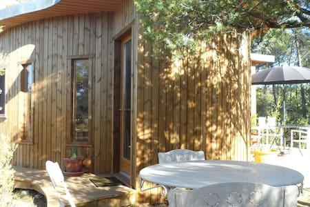 Rondo Provençal... - Earth House