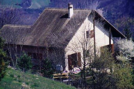 Maison Zzyzx - Miribel-Lanchâtre - Villa