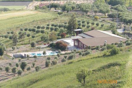 Agriturismo in Calabria mare Ionio - Laca - Bed & Breakfast