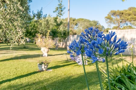 Villa Dani, casa con giardino - Huoneisto