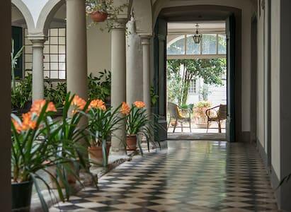 Nel giardino segreto - Borgo A Buggiano - Apartamento