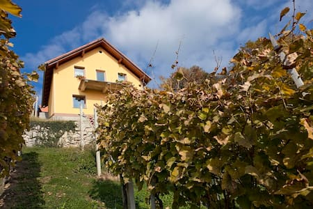 Vineyard cottage Ucman - Ev