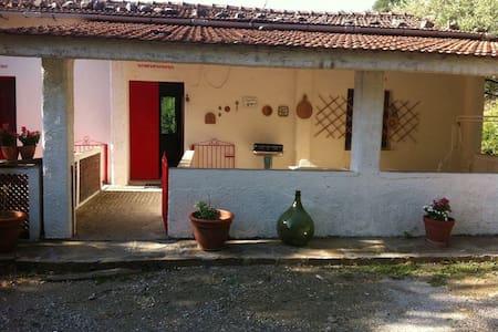 il Cilento interno ad un passo dal mare - Roccagloriosa - House