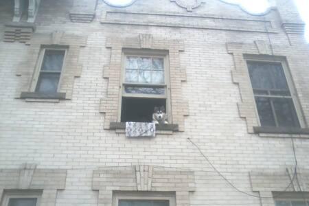 Room in Beautiful Victorian Apartment!!! - Denver - Apartment
