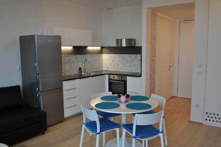 New flat situated in the heart of Ljubljana with stunning view from 8th floor. 2 minutes by foot from main bus and train station and free garage if you arrive by car. All essential infrastructure is within walking distance. Young family friendly.