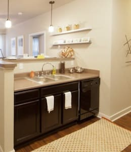 luxury 1 bedroom close to Downtown - Cleveland - Apartment