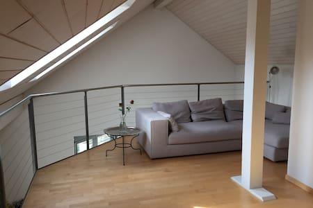 4.5 Zi Galeriewohnung sucht Wochenaufenthalter - Apartment