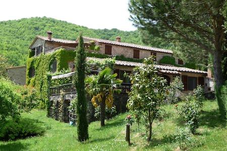 Casa al Fango, zwei typisch tosk. Natursteinhäuser - Hus