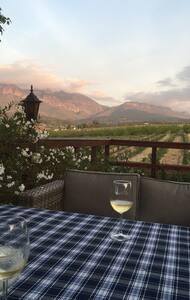 Vineyard and mountain views. Peace - House