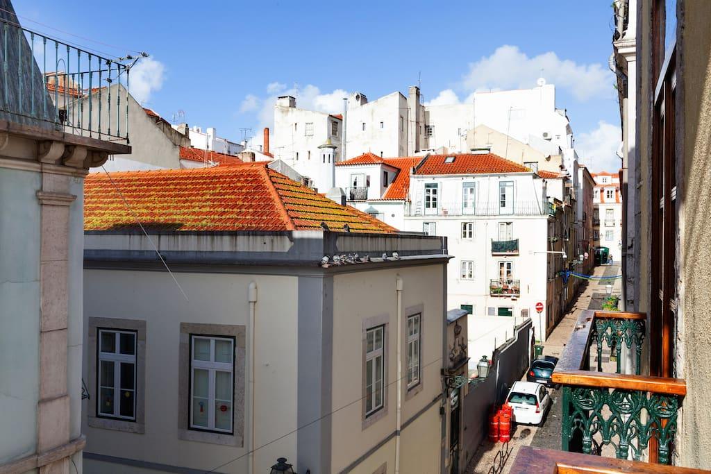 Love Lusitano-Lisbon is all around!