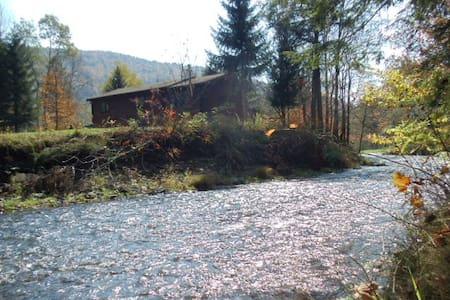 Catskill Mountain Streamside Cabin - Kabin